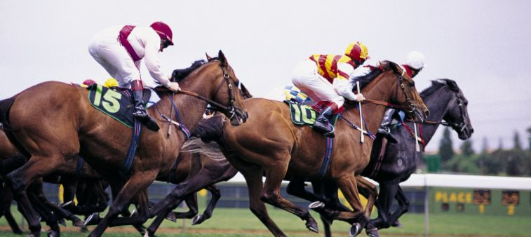 image-for-melbourne-cup-public-holiday